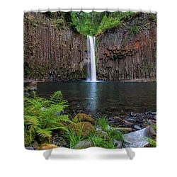 Abiqua Falls In Summer Shower Curtain by David Gn