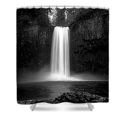 Abiqua's World Shower Curtain