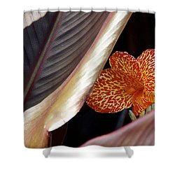 Ablaze In Color Shower Curtain