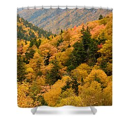Ablaze With Autumn Glory Shower Curtain by Nancy De Flon