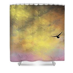 Abode Shower Curtain