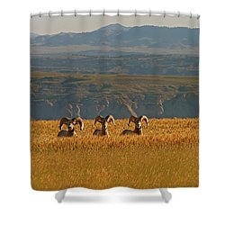 Above The Breaks-signed-#9386 Shower Curtain