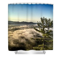 Above The Fray Shower Curtain by Tricia Marchlik