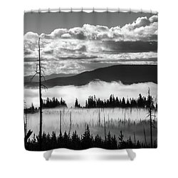 Shower Curtain featuring the photograph Rising Above by Colleen Coccia