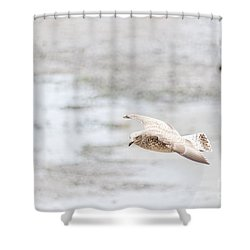 Shower Curtain featuring the photograph Above The Watten Sea 2 by Hannes Cmarits