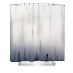 Above Them All Shower Curtain by Mike  Dawson