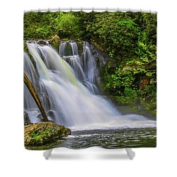 Abrams Falls 3 Shower Curtain