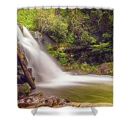 Abrams Falls Shower Curtain by David Cote