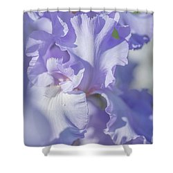 Absolute Treasure Closeup 2. The Beauty Of Irises Shower Curtain