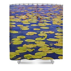 Absolutly Idyllic Shower Curtain by Joana Kruse