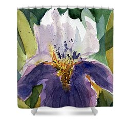 Absract Iris Shower Curtain