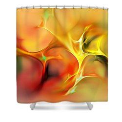 Abstract 061410a Shower Curtain by David Lane