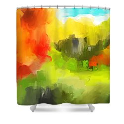 Abstract 112210 Shower Curtain by David Lane