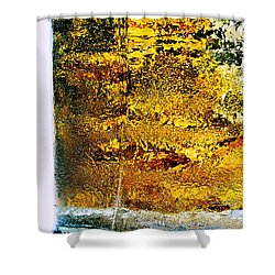 Abstract #8442 Shower Curtain
