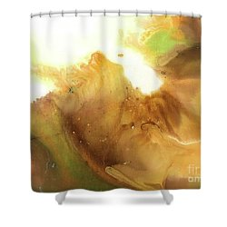 Abstract Acrylic Painting Fantasy Shower Curtain