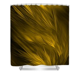 Abstract Art - Feathered Path Gold By Rgiada Shower Curtain by Giada Rossi
