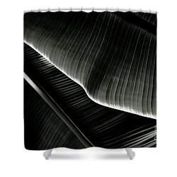 Abstract Banana Leaf Shower Curtain