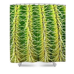 Abstract Cactus Shower Curtain by Delphimages Photo Creations