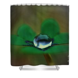 Abstract Clover Shower Curtain