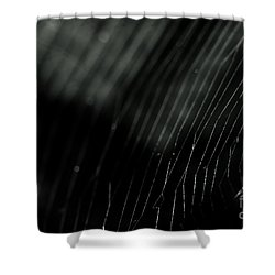 Abstract Cobweb Shower Curtain
