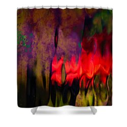 Shower Curtain featuring the photograph Abstract Color by Erin Kohlenberg