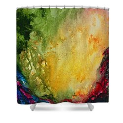 Abstract Color Splash Shower Curtain