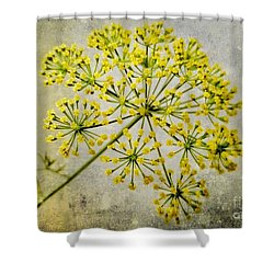 Attractive Dill Blossom  Shower Curtain