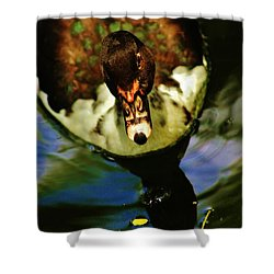 Shower Curtain featuring the photograph Abstract Duck by Craig Wood