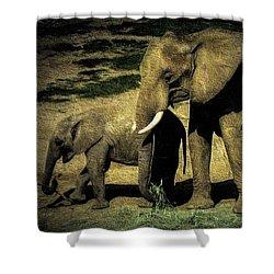 Abstract Elephants 23 Shower Curtain