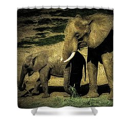 Abstract Elephants 23 Shower Curtain