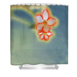 Abstract Floral Art 121 Shower Curtain