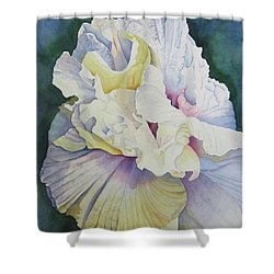 Shower Curtain featuring the painting Abstract Floral by Teresa Beyer