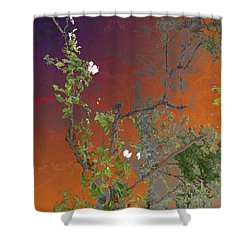 Abstract Flowers Of Light Series #13 Shower Curtain