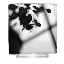 Abstract Flowers Shower Curtain by Todd A Blanchard