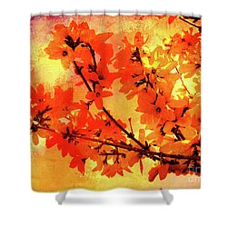 Abstract Forsythia Flowers Shower Curtain