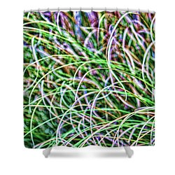 Abstract Grass Shower Curtain by Roberta Byram