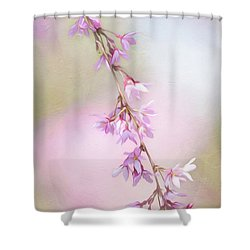 Abstract Higan Chery Blossom Branch Shower Curtain