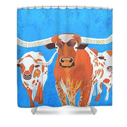 Abstract Mehndi Texas Longhorns Shower Curtain