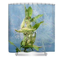 Abstract Milkweed Shower Curtain by Jeanette Oberholtzer