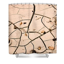 Abstract Mud Flat Pink Saturated Shower Curtain