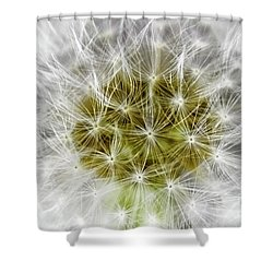Abstract Nature Dandelion Floral Maro White And Yellow A1 Shower Curtain