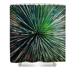 Abstract Nature Desert Cactus Photo 207 Blue Green Shower Curtain