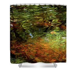 Abstract Of St Croix River 04 Shower Curtain