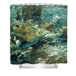 Abstract Of The Underwater World. Production By Nature Shower Curtain by Jenny Rainbow