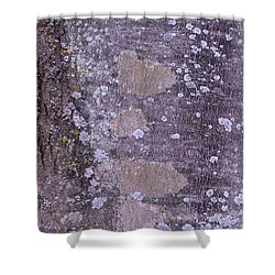 Abstract Photo 001 A Shower Curtain by Larry Capra