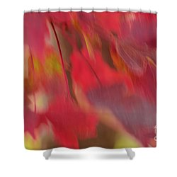 Abstract Red Maple Leaves Shower Curtain