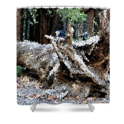 Abstract Sequoia Tree Shower Curtain