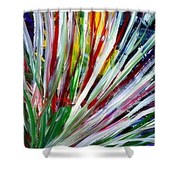 Abstract Series C1015cp Shower Curtain