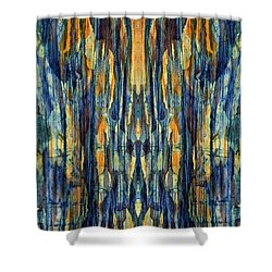 Abstract Symmetry I Shower Curtain