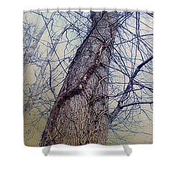 Abstract Tree Trunk Shower Curtain